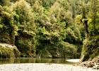 whanganuii river1